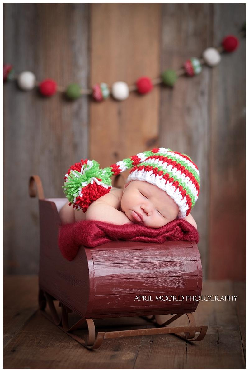 Newborn Holiday Photo
